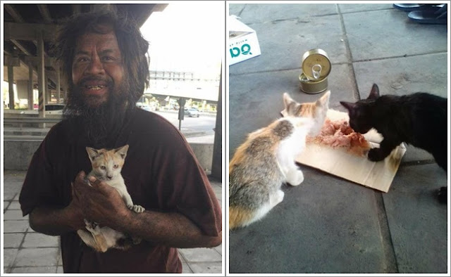 MasyaAllah, Tunawisma ini Jualan Jeruk Buat Beli Makanan Kucing Liar, Kisahnya Buat...
