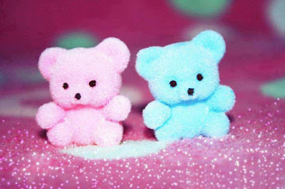 twins-teddu-pink-and-light-blue-color-lovely-soft-toys