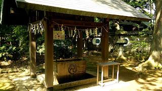 赤坂氷川神社 手水舎