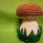 http://kerook.eu/wp-content/uploads/sites/2/2015/10/Mushroom-Amigurumi-Pattern-.pdf