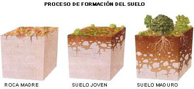 FORMACION DEL SUELO EBOOK DOWNLOAD