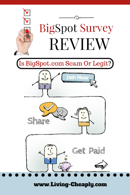 Big Spot Survey Review