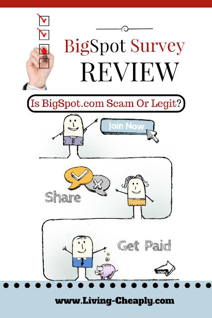 Big Spot Survey Review