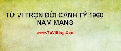 TU VI TRON DOI CANH TY NAM MANG