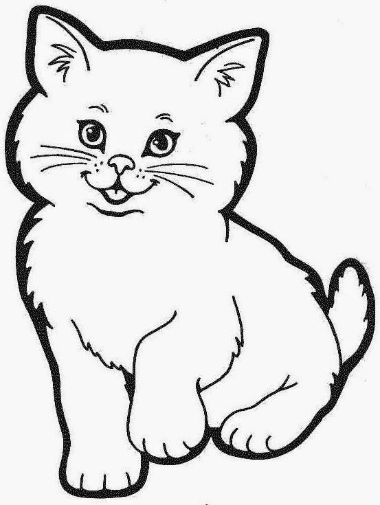 Gambar Kucing Hitam Comel Kucingcomel Com