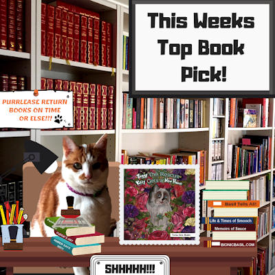 Amber's Book Reviews What Are We reading This Week - Ziggy the Rescue Kitty Gets a New Home by Tama Ann Blake @BionicBasil®