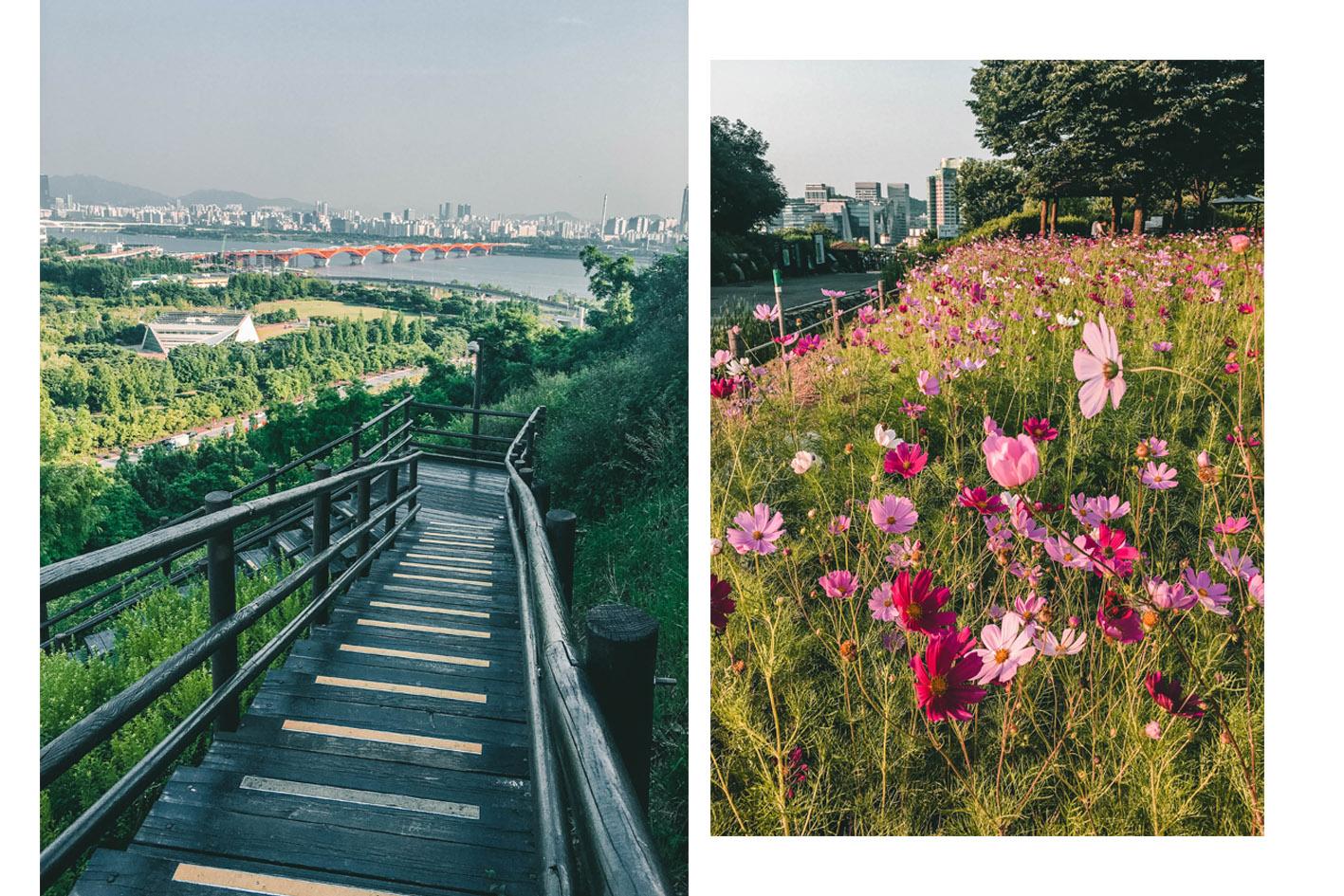 Haneul Park Séoul