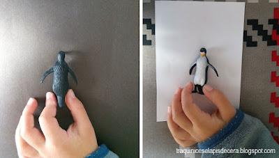 Porque é que os pinguins são pretos e brancos