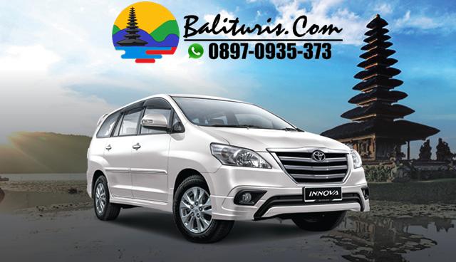 BALI TOURS DRIVER PRICE