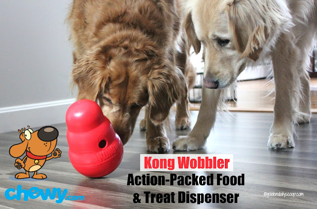 golden retriever dogs playing with Kong Wobbler interactive toy