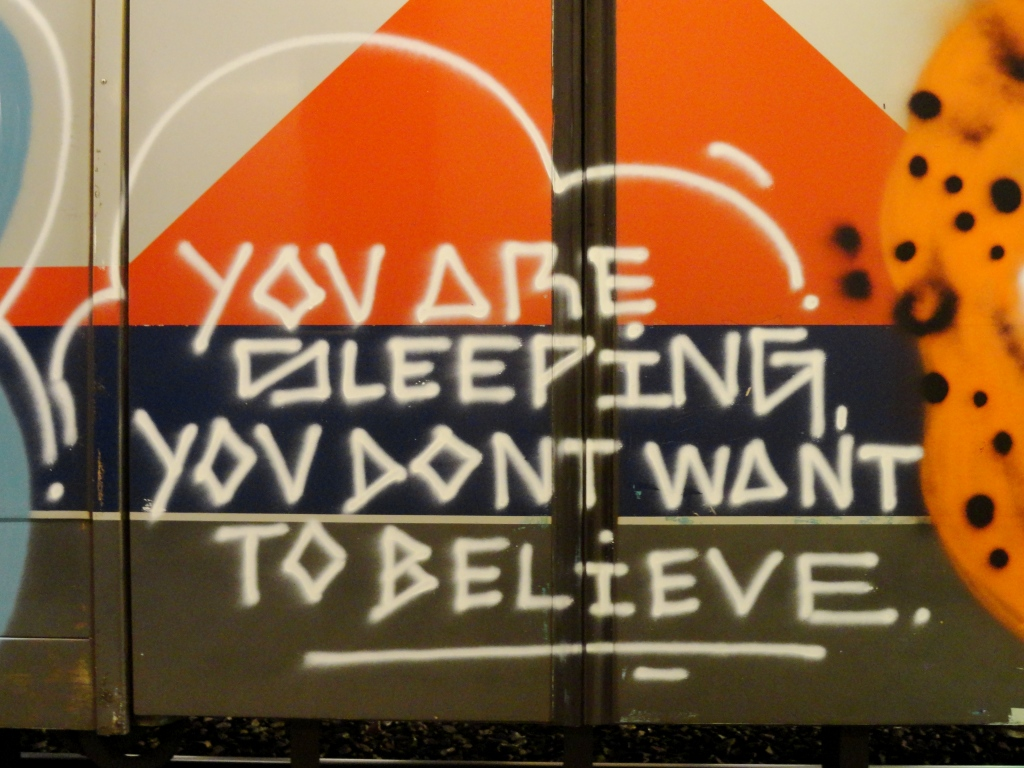 YOU ARE SLEEPING, YOU DON'T WANT TO BELIEVE Art On Train