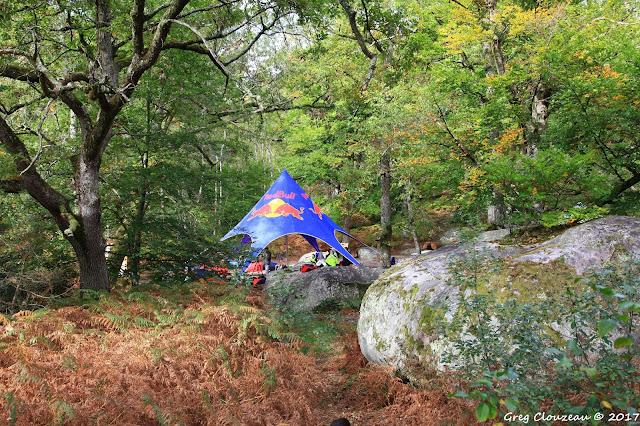 La tente du Village RedBull au cœur de la Réserve Biologique Dirigée du Cuvier à Fontainebleau.