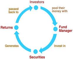 Blue chip fund