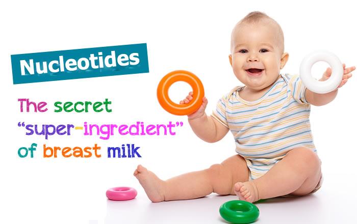 Kết quả hình ảnh cho nucleotides trong sữa công thức