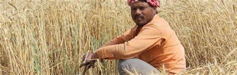 www.hindibeeststory.com