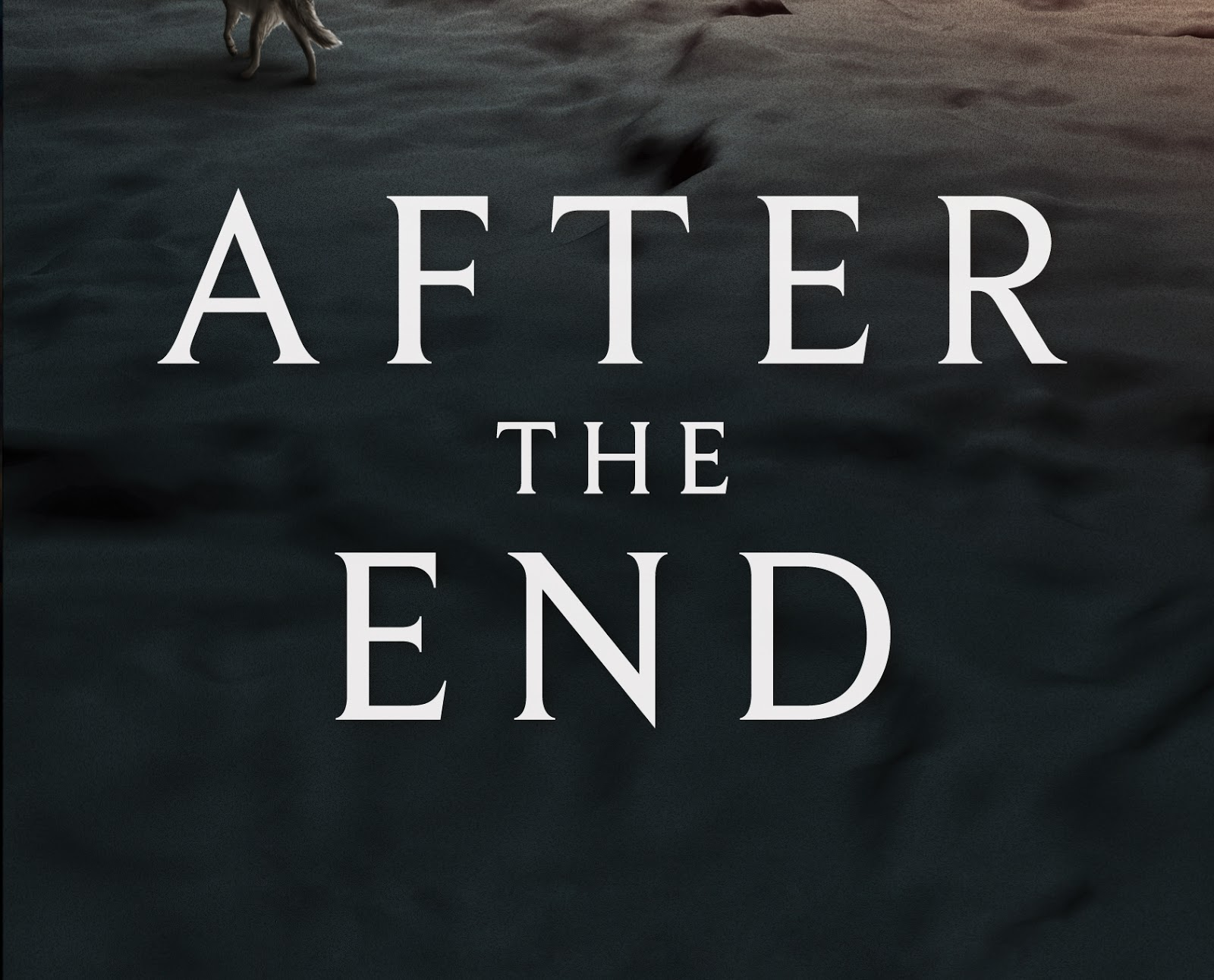 After The End Amy Plum