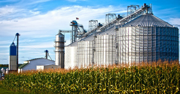 Grain Bin Safety Understanding Hazards
