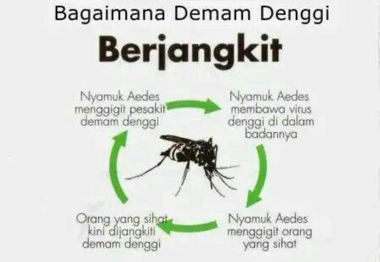Inilah-Penyakit-yang-Disebabkan-Oleh-Virus-Pada-Manusia