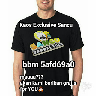 http://www.agengrosirsancu.com/2011/10/kaos-sancu.html