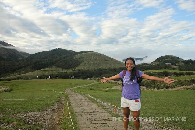 yangmingshan grassland