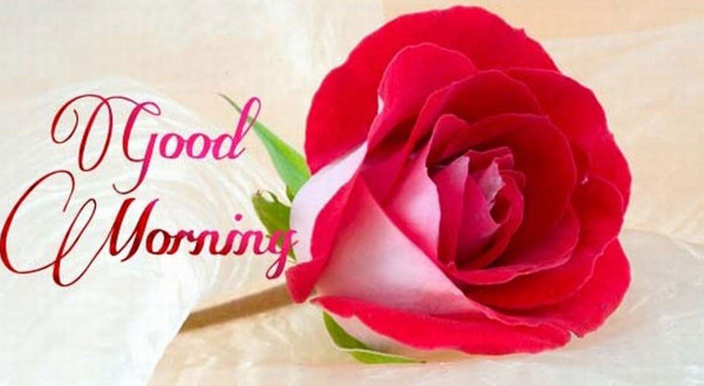 Good Morning Love Quotes In Hindi Hindi Love Quotes Getmenews