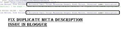 fix duplicate meta description