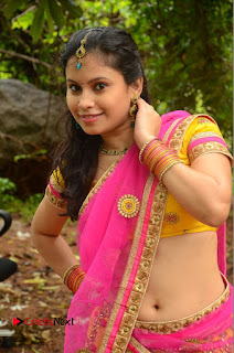 Actress Sumi Ghosh Pictures in Half Saree at Lovers Park Movie Opening  0117.JPG