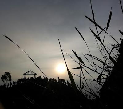 Oppo F1 Plus Membingkai Keelokan Wajah Indonesia