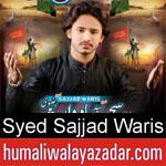 https://www.humaliwalyazadar.com/2018/09/syed-sajjad-waris-rizvi-nohay-2019.html