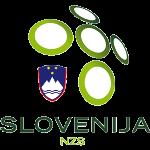 Logo Timnas Sepakbola Slovenia PNG