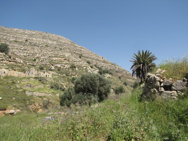 עין כפירה - ליד ירושלים