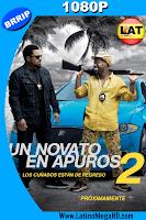 Un Novato en Apuros 2 (2016) Latino HD 1080P - 2016