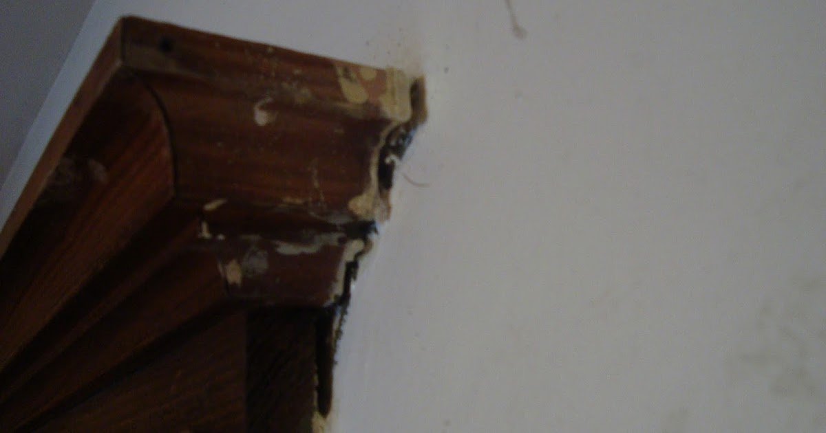 lady of whimsy remove paint splatter from wood trim after it dries. Black Bedroom Furniture Sets. Home Design Ideas