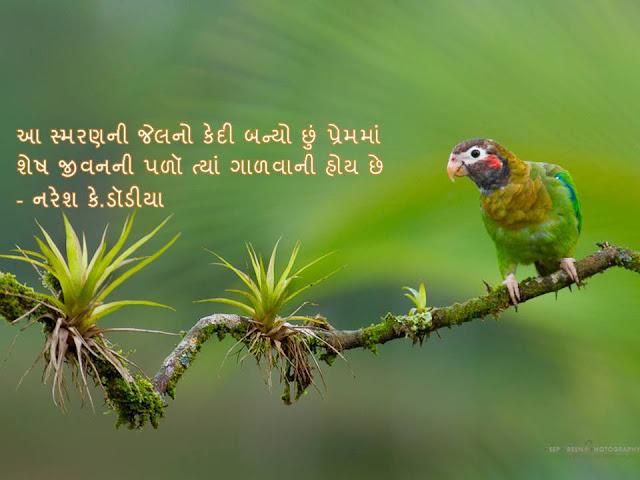 आ स्मरणनी जेलनो केदी बन्यो छुं प्रेममां Gujarati Sher By Naresh K. Dodia