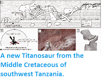 http://sciencythoughts.blogspot.co.uk/2014/10/a-new-titanosaur-from-middle-cretaceous.html