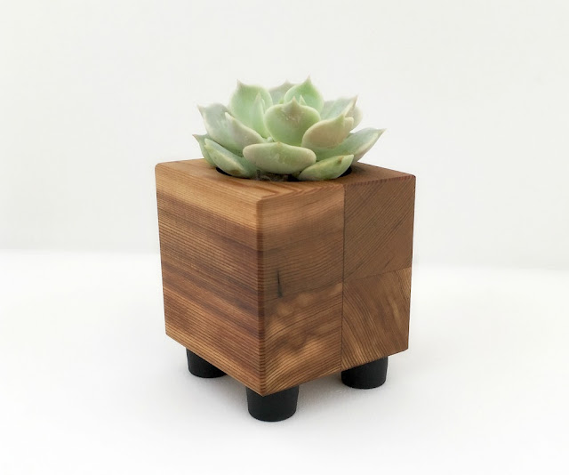 Small Cubist Cacti Planter Pot