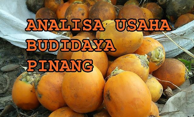 Analisa Usaha Budidaya Pinang