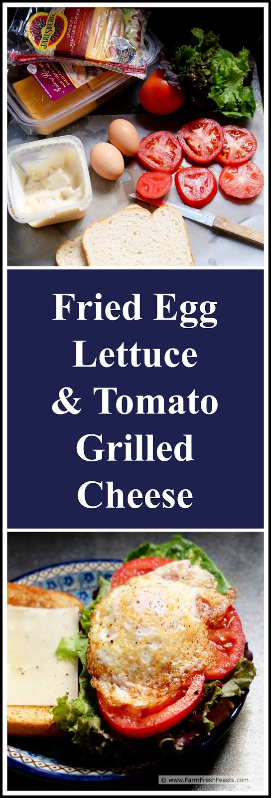 ... Fresh Feasts: Fried Egg, Lettuce, and Tomato Grilled Cheese Sandwich