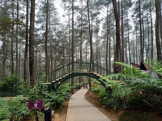 Wood Bridge di Orchid Forest Cikole