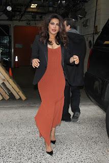 Priyanka (8).jpg