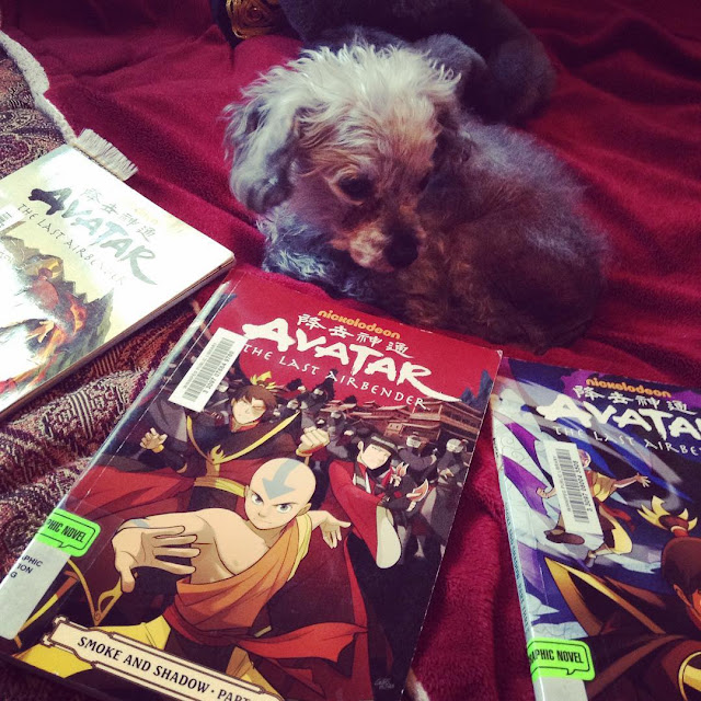 A sleek grey poodle, Murchie, lies on a red blanket. Three volumes of Avatar the Last Airbender: Smoke and Shadow are arranged in a fan in front of him. The closest book's cover features a bald boy of Asian descent in a martial arts stance. Behind him are a dark-haired boy and girl, also of Asian descent and prepared to fight, the boy with his fists and the girl with throwing knives.