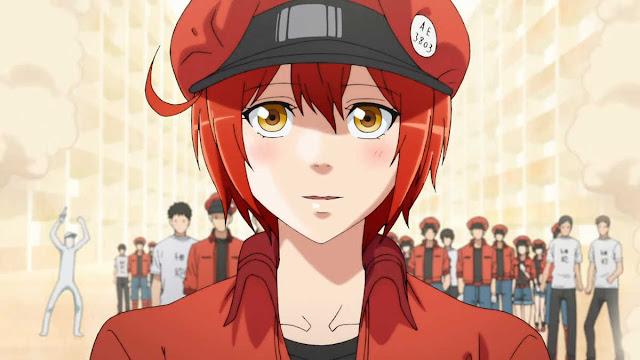 Anime Trombosit (Hataraku Saibou) Review