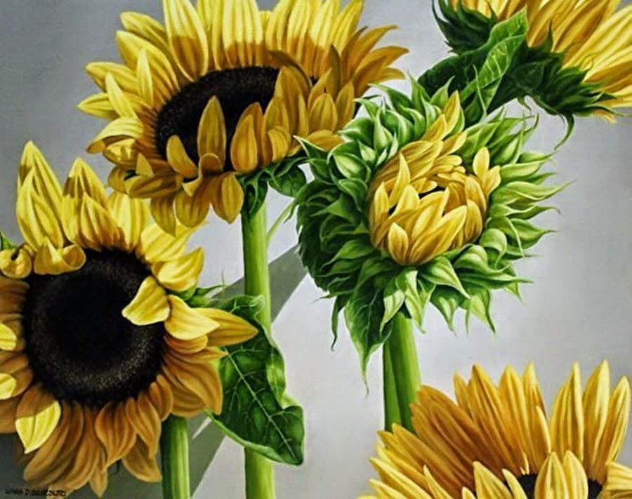 Imágenes Arte Pinturas: Pintura Cos bodegones de flores y