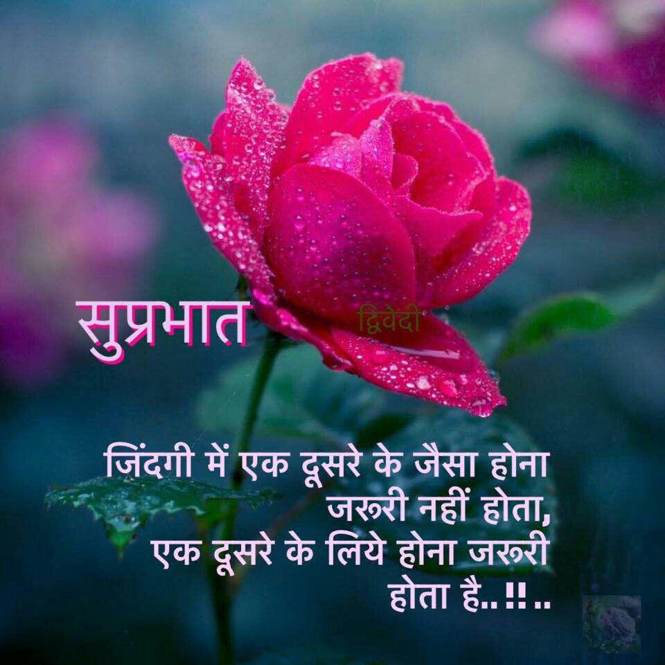 Good Morning Sms For Bhabhi In Hindi Hindi Sms Funny Jokes Shayari