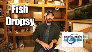 Fish Dropsy