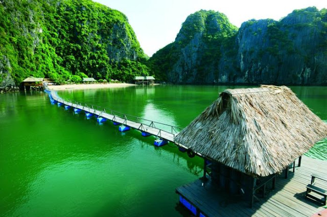 Cat Ba Island- Where Jungle Meets Blue Ocean