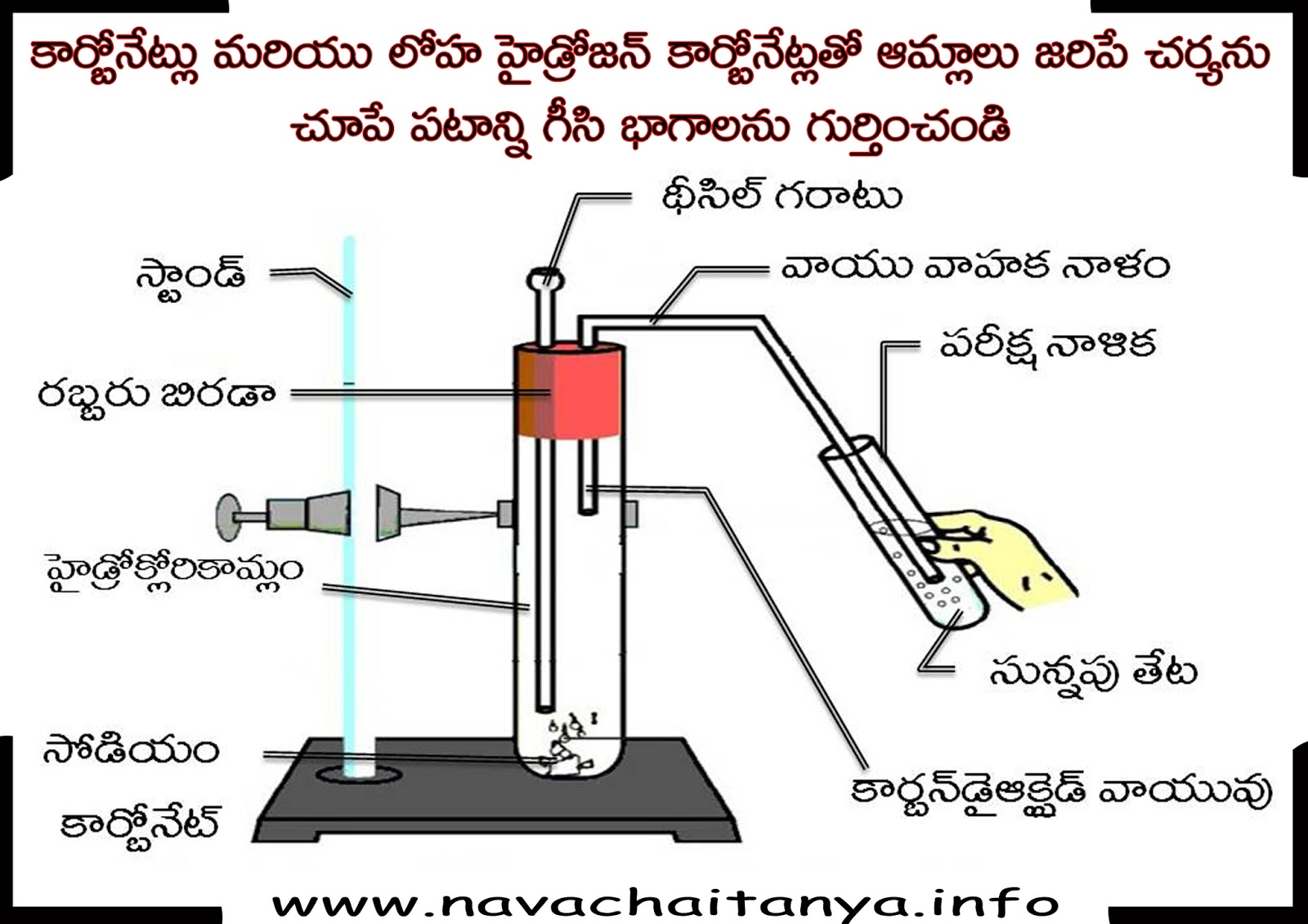 Science Diagrams Of Class 10 Directv Whole Home Dvr Setup Diagram 10th Physical కరబనటల లహ