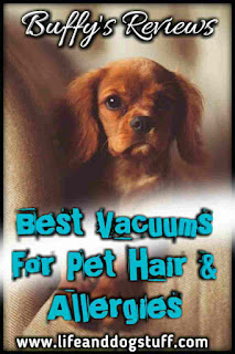 Best Vacuums for Pet Hair and Allergies