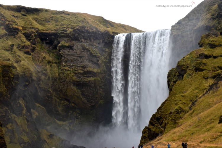 Four Days In Iceland - Day 3: The South Coast | Ms. Toody Goo Shoes