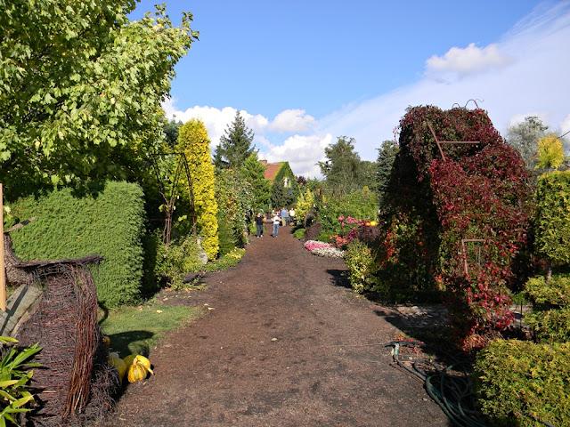 W Starym Dworze są piękne ogrody.